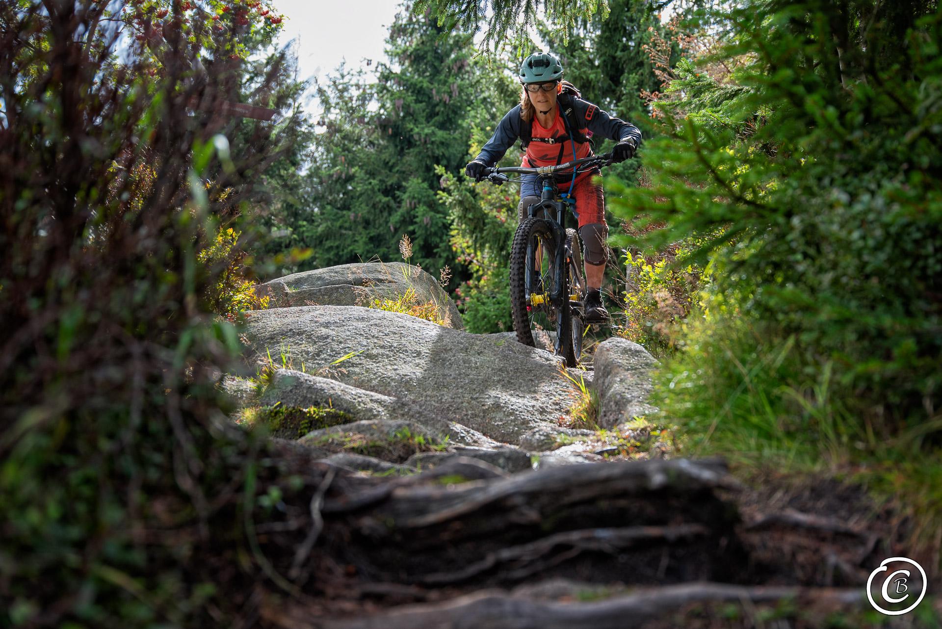 Mountainbiken auf Harzer Trails