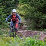 Wurzelpassage auf einem Harzer Trail beim Mountainbiken